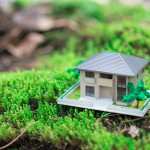 Зачем нужен земельный участок — ставим цели