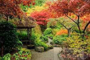 Сад на загородном участке