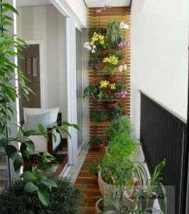 Размещение растений на балконе