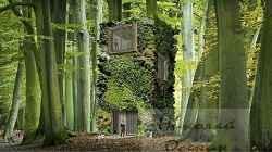 Гармония фасада с природой