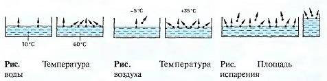 Температура воды и воздуха,. Площадь испарения