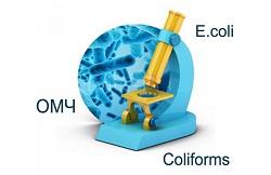 Бактериологический анализ воды