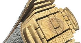 Качество строительной древесины
