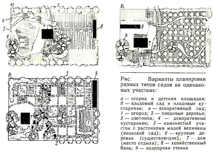 Варианты планировки разных типов садов на одинаковых участках