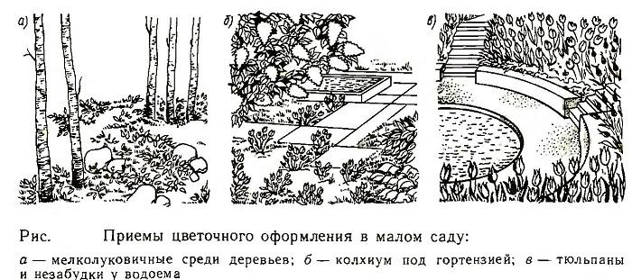 . Приемы цветочного оформления в малом саду