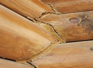 Отрицательныесвойства древесины