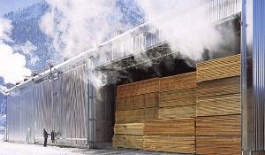 Стоит ли сушить древесину