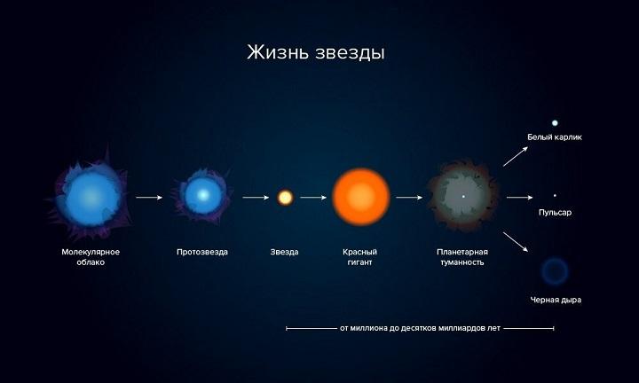 Жизнь звезды